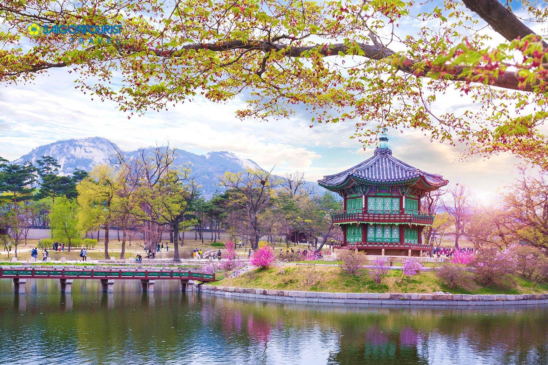 Muốn đến Hàn Quốc, bạn phải nhớ những điều sau