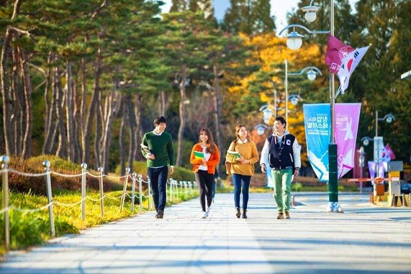 Trình độ tiếng Hàn của bạn sẽ nâng cao nhanh chóng khi du học tiếng Hàn visa D4-1
