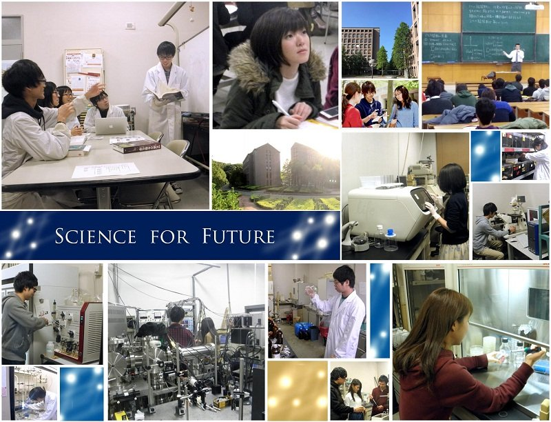 Theo học tại đại học Hyogo để có cơ hội nhận học bổng giá trị cao