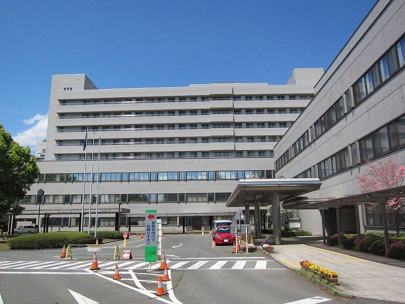 Đại học Gunma được sát nhập từ nhiều cơ sở giáo dục khác