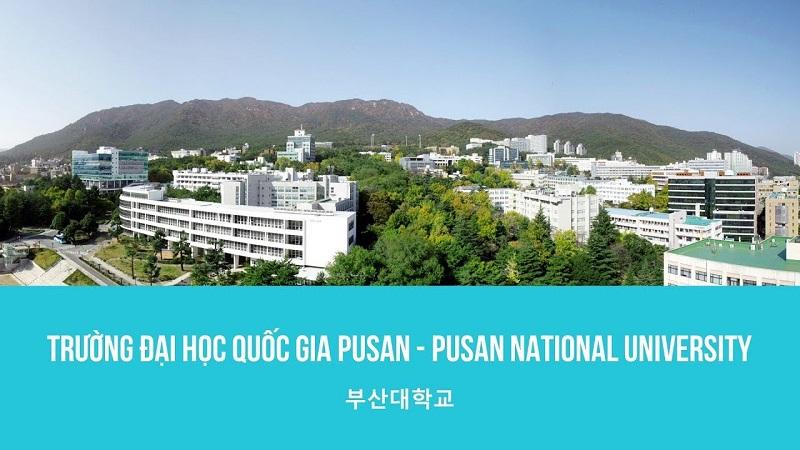 Đại học Quốc gia Busan Hàn Quốc