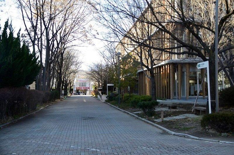 Trường đại học Shinshu luôn mang đến cơ hội học tập tốt nhất cho sinh viên