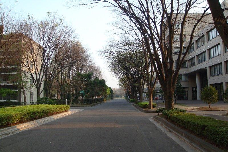 Trường đại học Saitama cung cấp nhiều chương trình học bổng