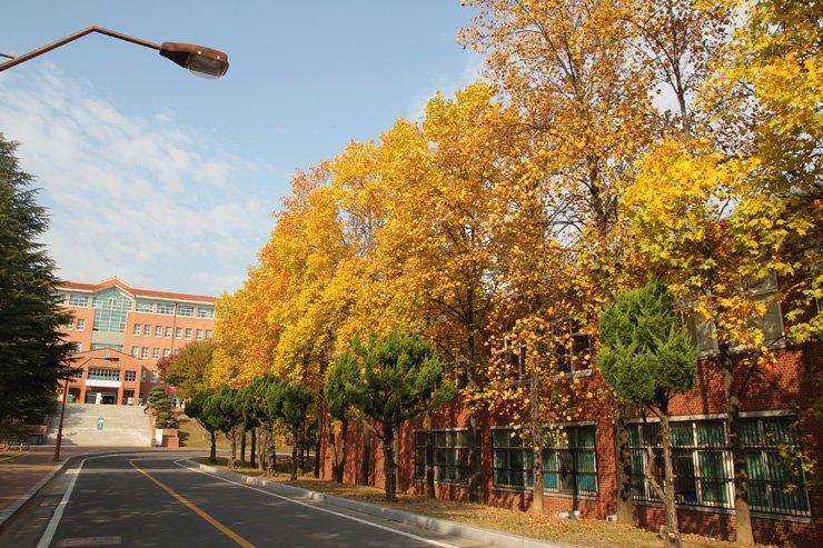Đại học Keimyung Hàn Quốc là trường đại học đẹp nhất Hàn Quốc