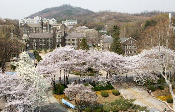 Đại học sư phạm Hàn Quốc ĐH Yonsei