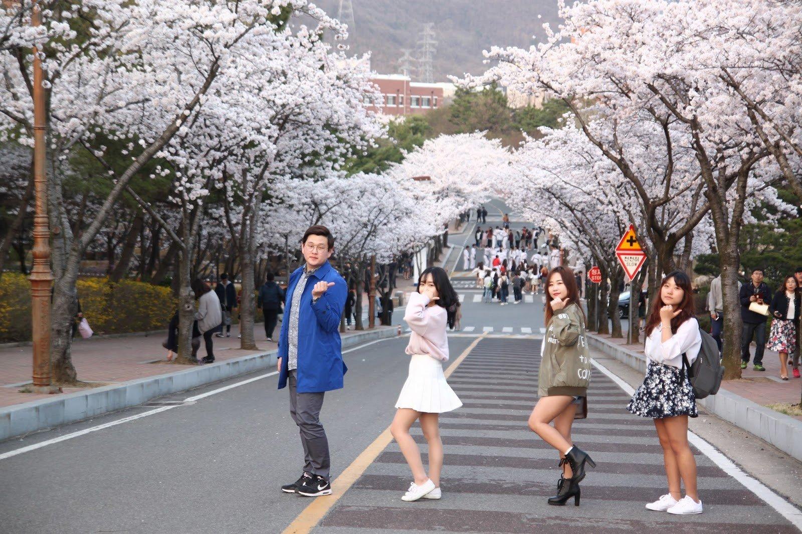 Đại học Daegu rất thu hút sinh viên quốc tế
