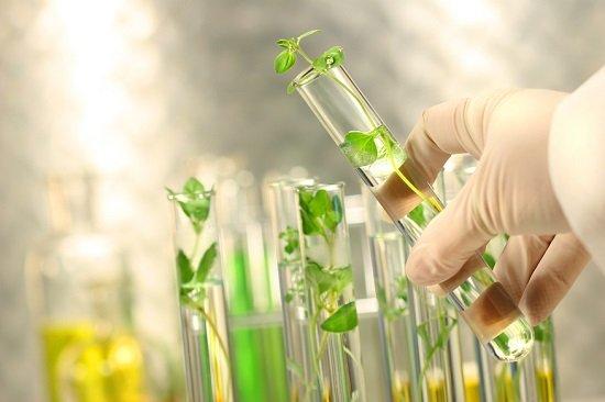 Du học Nhật ngành công nghệ sinh học rất nhiều cơ hội việc làm