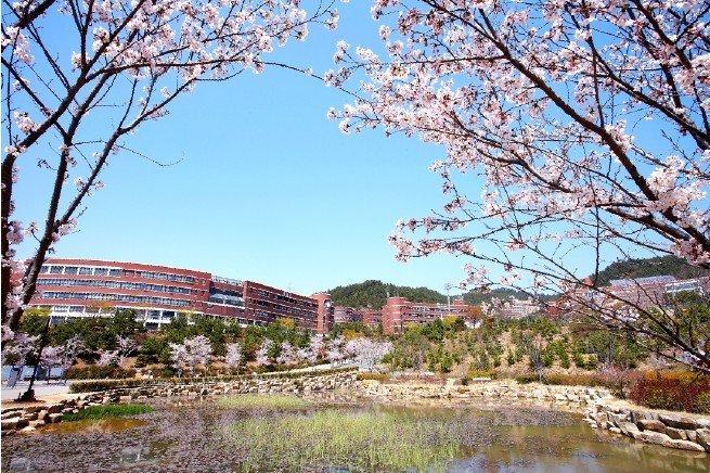 Đại học Silla vào mùa xuân