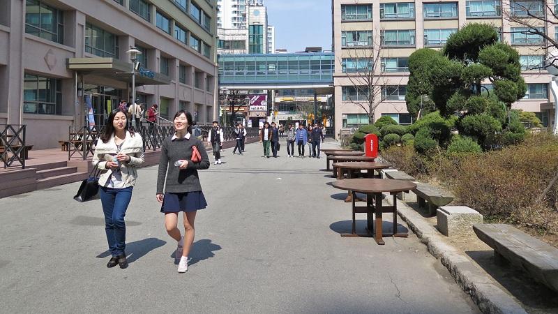Đại học ngoại ngữ Hàn Quốc gồm nhiều học viện thành viên
