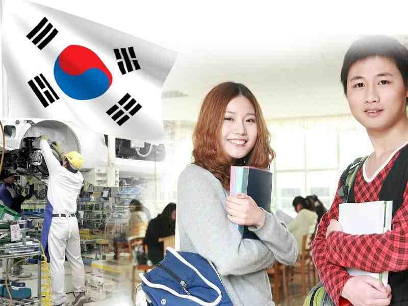 Du học nghề Hàn Quốc bạn có nhiều cơ hội lựa chọn nghề học