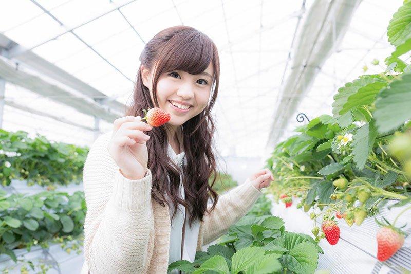 Du học Nhật Bản ngành Nông nghiệp - Mảnh đất phát triển màu mỡ