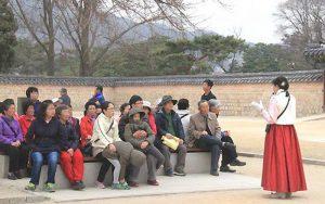 Du học Hàn Quốc ngành du lịch – tại sao lại không?
