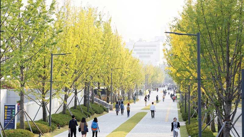 Lượng du học Hàn Quốc ngành kinh tế đang ngày một tăng
