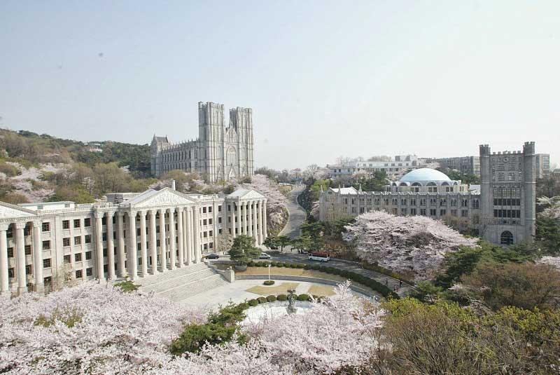 Hàn Quốc có rất nhiều trường đại học uy tín đào tạo ngành Marketing