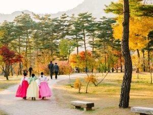 Công ty du học Hàn Quốc tại Vinh uy tín, đảm bảo và đáng tin cậy