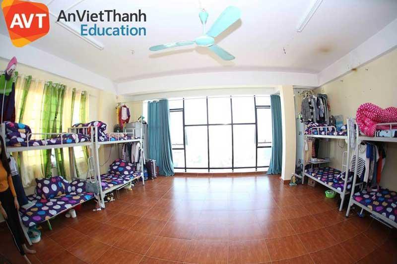 Tổ chức giáo dục AVT Education là đơn vị tư vấn du học Hàn Quốc có ký túc xá cho những bạn ở xa
