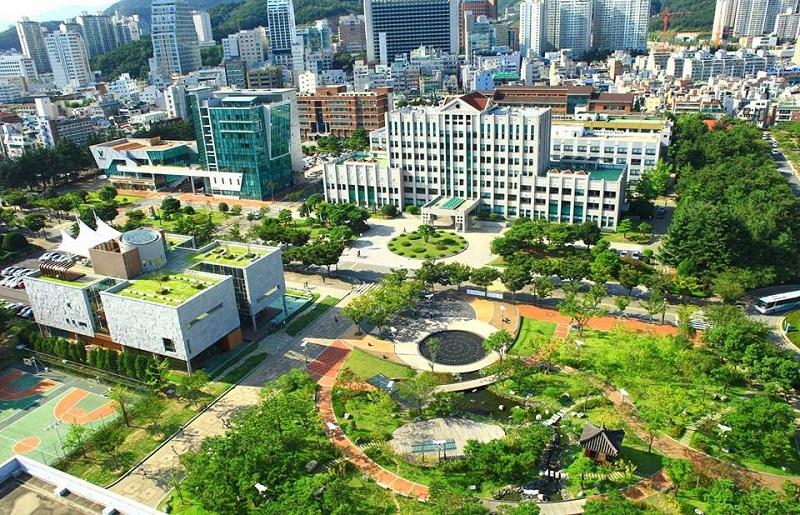 Du học Đại học quốc gia Pukyong - một trường Đại học công lập ở Hàn Quốc