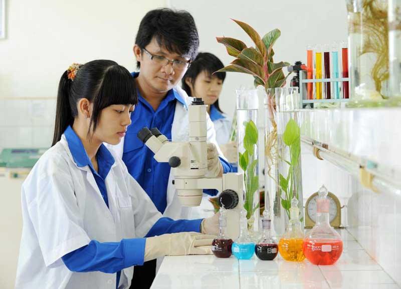 Sinh viên học ngành môi trường ở Hàn Quốc luôn được đánh giá rất cao