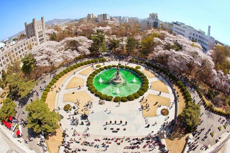 Đại học KyungHee cũng là một lựa chọn phù hợp khi du học Hàn bằng tiếng Anh