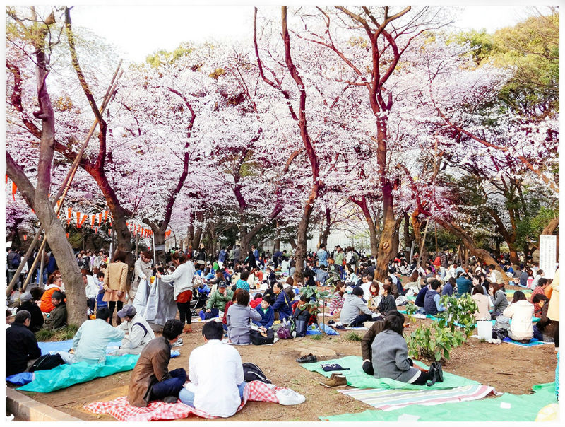 Du học Nhật Bản tháng 4 2019 là kỳ đông sinh viên đăng ký nhất trong năm
