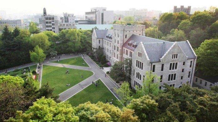 Học Đại học Hàn Quốc có tốt không?