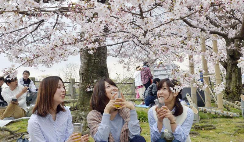 Những vấn đề lưu ý khi du học Nhật Bản 6 tháng đầu