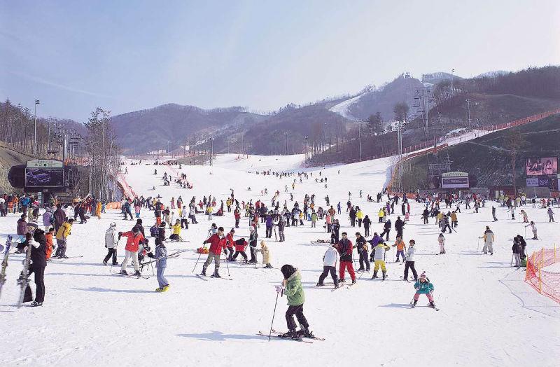 Thời tiết du học Nhật Bản kỳ tháng 1 rất lạnh