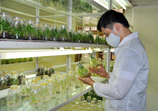 Thông tin du học Hàn Quốc ngành nông nghiệp