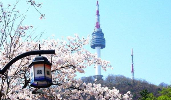 cách gia hạn visa du học Hàn Quốc