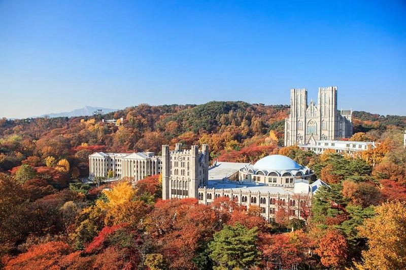 Trường Đại học Kyung Hee - Ngôi trường của các siêu sao