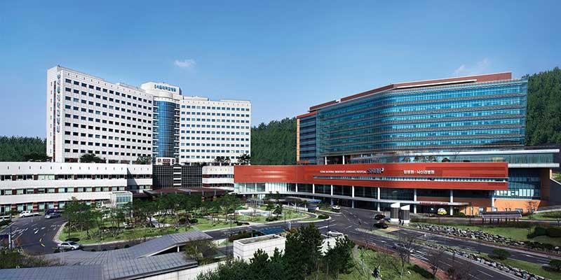 Các trường đại học mỹ thuật Hàn Quốc có chất lượng đào tạo rất tốt