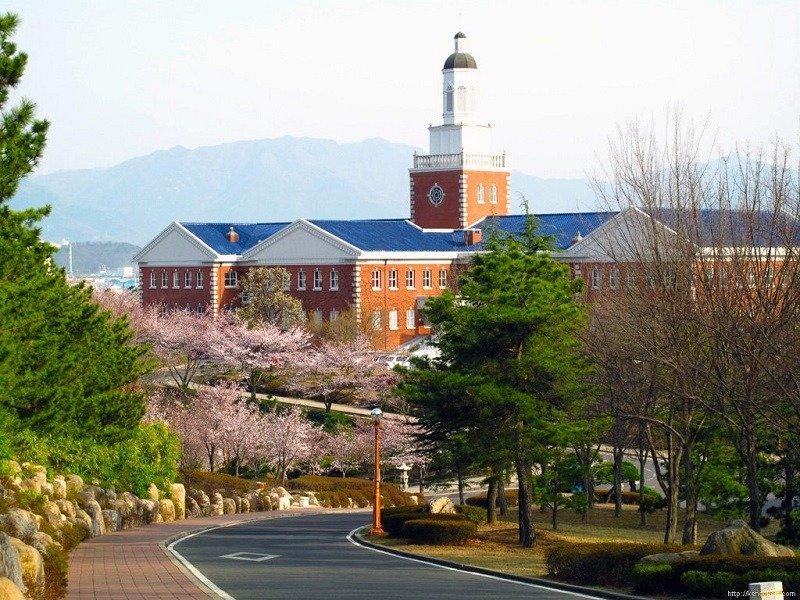 Đã từng có rất nhiều bộ phim đình đám của Hàn Quốc như Vườn sao băng, Cơn mưa tình yêu... lấy bối cảnh tại trường Đại học Keimyung.